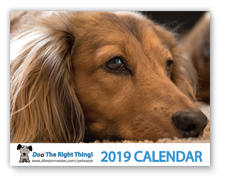 View the 2018 Doo the Right Thing Calendar